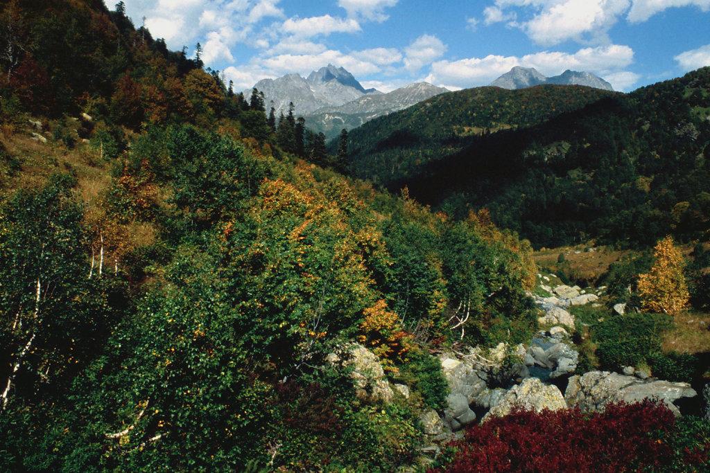 Псху-Гумистский заповедник | Abhazia wilderness