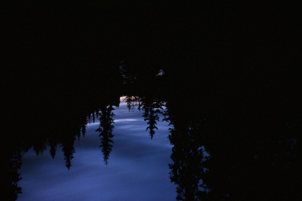 blog-kareia-fall-01.jpg