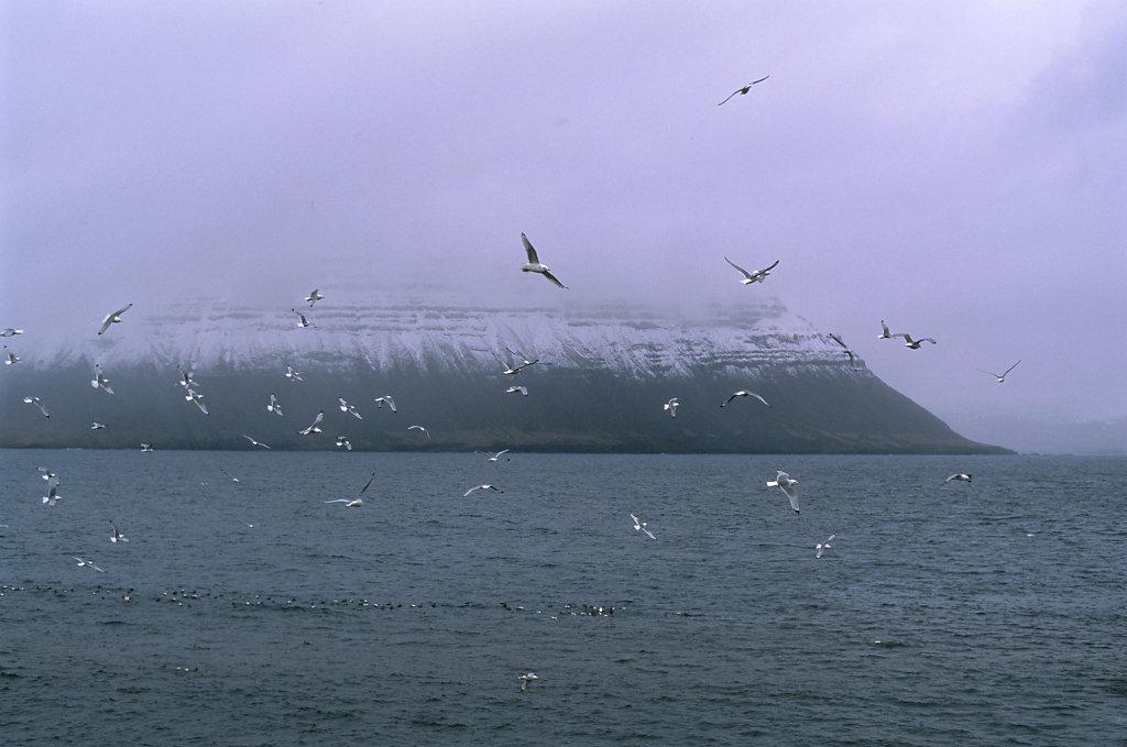 Iceland-388-blog.jpg