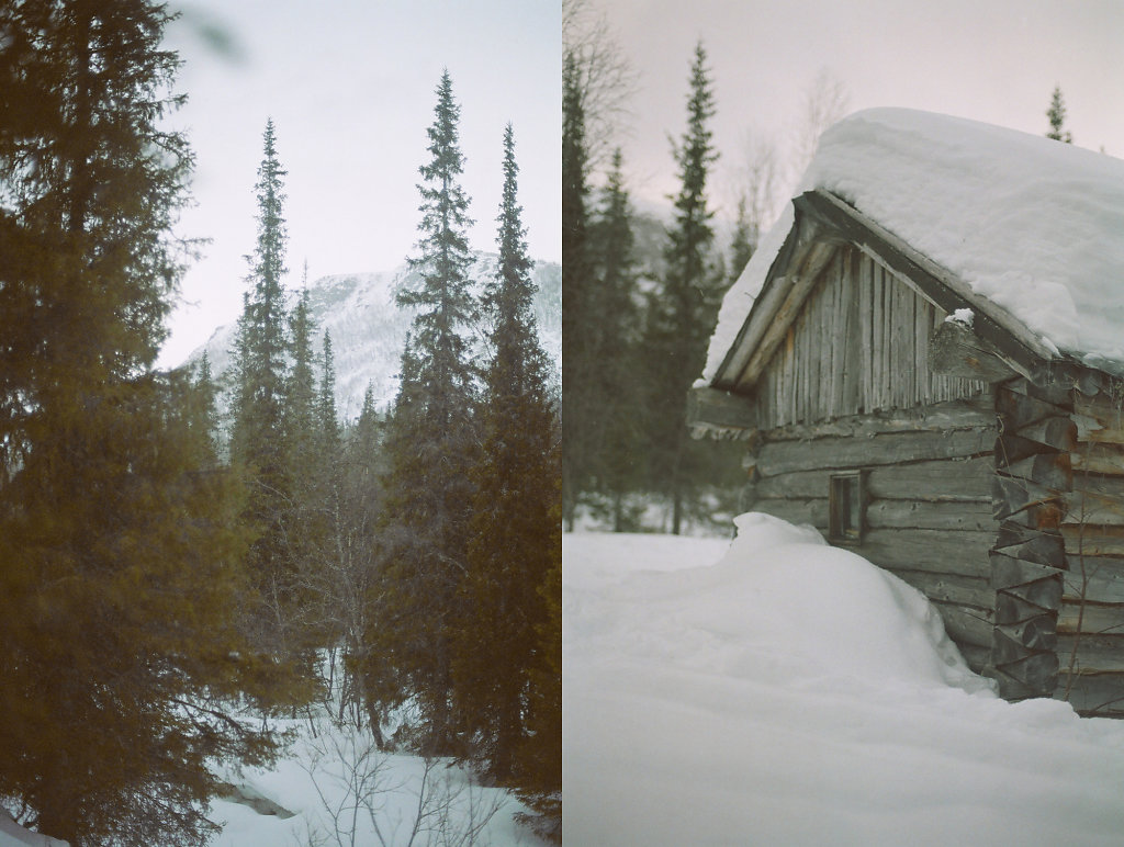 seid-winter-site-02.jpg